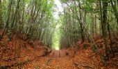 Trail Walk SAINT-JEAN-AUX-BOIS - en forêt de Compiègne_22_la Muette_le Mont Arcy_le Fort Poirier - Photo 34