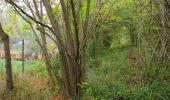 Trail Walk SAINT-JEAN-AUX-BOIS - en forêt de Compiègne_22_la Muette_le Mont Arcy_le Fort Poirier - Photo 161