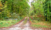 Trail Walk SAINT-JEAN-AUX-BOIS - en forêt de Compiègne_22_la Muette_le Mont Arcy_le Fort Poirier - Photo 105