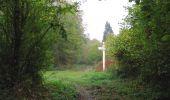 Trail Walk SAINT-JEAN-AUX-BOIS - en forêt de Compiègne_22_la Muette_le Mont Arcy_le Fort Poirier - Photo 157
