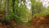 Trail Walk SAINT-JEAN-AUX-BOIS - en forêt de Compiègne_22_la Muette_le Mont Arcy_le Fort Poirier - Photo 65