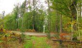 Trail Walk SAINT-JEAN-AUX-BOIS - en forêt de Compiègne_22_la Muette_le Mont Arcy_le Fort Poirier - Photo 70