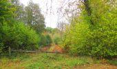 Trail Walk SAINT-JEAN-AUX-BOIS - en forêt de Compiègne_22_la Muette_le Mont Arcy_le Fort Poirier - Photo 14