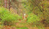 Trail Walk SAINT-JEAN-AUX-BOIS - en forêt de Compiègne_22_la Muette_le Mont Arcy_le Fort Poirier - Photo 69
