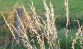 Randonnée Marche SAINT-AGREVE - Chemin de Saint Régis: Saint Agrève - Lalouvesc - Photo 1
