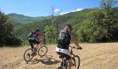 Trail Mountain bike CERET - De Céret vers Les Salines par le Coll del Pou de la Neu (Col du Puits de la Neige) - Photo 6