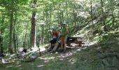 Trail Mountain bike CERET - De Céret vers Les Salines par le Coll del Pou de la Neu (Col du Puits de la Neige) - Photo 5