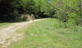 Trail Mountain bike CERET - De Céret vers Les Salines par le Coll del Pou de la Neu (Col du Puits de la Neige) - Photo 4