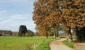 Randonnée Marche Hotton - Fronville - Monteuville - Petihan - Photo 20
