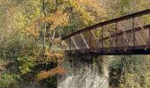 Randonnée Marche Hotton - Fronville - Monteuville - Petihan - Photo 18