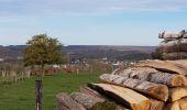 Randonnée Marche Hotton - Fronville - Monteuville - Petihan - Photo 15