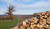 Randonnée Marche Hotton - Fronville - Monteuville - Petihan - Photo 14