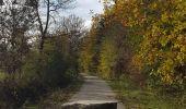 Randonnée Marche Hotton - Fronville - Monteuville - Petihan - Photo 10