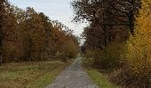 Randonnée Marche Hotton - Fronville - Monteuville - Petihan - Photo 7