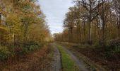 Randonnée Marche Hotton - Fronville - Monteuville - Petihan - Photo 6