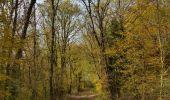 Randonnée Marche Hotton - Fronville - Monteuville - Petihan - Photo 4