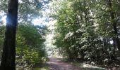 Trail Walk SAINT-CYR-L'ECOLE - De Saint Cyr l'École à Versailles - Photo 5