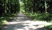 Randonnée V.T.T. SAINT-BONNET-TRONCAIS - Le circuit des 7 chênes - Saint Bonnet Tronçais - Photo 4