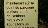 Randonnée Marche Somme-Leuze - NETTINE ... le Bois de Champaille et son parcours santé. - Photo 6