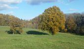 Randonnée Marche Somme-Leuze - NETTINE ... le Bois de Champaille et son parcours santé. - Photo 3