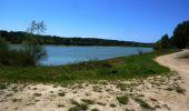 Trail Walk SAINTE-FOY-DE-PEYROLIERES - Lac et bois autour de Sainte Foy de Peyrolières - Photo 3