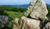 Randonnée V.T.T. SAINT-NICOLAS-DES-BIEFS - Camping Les Myrtilles - Base VTT-FFCT - Circuit N° 4 - Saint Nicolas des Biefs - Photo 4