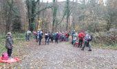 Trail Walk BITSCHWILLER-LES-THANN - 18.11.13.Bitschwiller - Photo 4