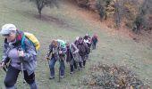 Trail Walk BITSCHWILLER-LES-THANN - 18.11.13.Bitschwiller - Photo 3