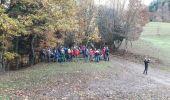 Trail Walk BITSCHWILLER-LES-THANN - 18.11.13.Bitschwiller - Photo 2