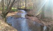 Trail Walk Gesves - FAULX-Les-TOMBES ... par la vallée du Samson et le Bois de Gesves. - Photo 3