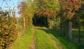 Trail Walk PREUX-AU-BOIS - Circuit de Preux au Bois - Photo 6