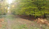 Trail Walk PREUX-AU-BOIS - Circuit de Preux au Bois - Photo 4
