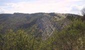 Randonnée Marche RIMON-ET-SAVEL - Sur les Pas des Huguenots  -   Rimon-et-Savel - Die - Photo 5