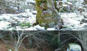Randonnée Marche LES NOES - Nouvelle Piste Forestière entre le Rocher de Rochefort et le Plan du Grand Jonc - Photo 6