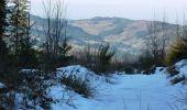 Randonnée Marche LES NOES - Nouvelle Piste Forestière entre le Rocher de Rochefort et le Plan du Grand Jonc - Photo 5