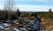 Randonnée Marche LES NOES - Nouvelle Piste Forestière entre le Rocher de Rochefort et le Plan du Grand Jonc - Photo 1