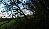 Trail Walk Hamois - NATOYE - Photo 9
