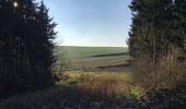 Trail Walk Tervuren - Tervuren Leefdaal 22 km - Photo 19