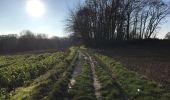 Randonnée Marche Tervuren - Tervuren Leefdaal 22 km - Photo 9