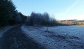 Randonnée Marche Vielsalm - baraque fraiture  - Photo 1