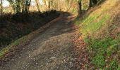 Trail Walk RENNES - 10.01.2019 - RENNES à La chap.Foug. - Photo 8