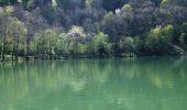 Trail Walk KIRCHBERG - Le Lac de Lachtelweiher et la source de la Doller - Photo 1