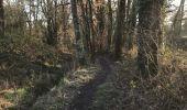 Randonnée Marche LAILLE - 24.01.2019 - LAILLÉ Nord et Sud - Photo 2