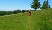 Randonnée Marche LE VALTIN - Les Roches du Valtin et les Chaumes de Sérichamp - Photo 2