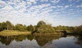 Trail Walk ECROMAGNY - Le sentier des Epoissets - Ecromagny - Photo 3