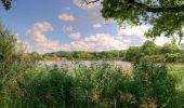 Trail Cycle DIEUZE - Autour de l'étang de Lindre - circuit 18 - Dieuze - Photo 5