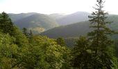 Randonnée Marche SAINT-MAURICE-SUR-MOSELLE - Le Lac d'Alfed et les Roches de Morteville - Photo 6