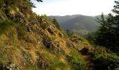 Randonnée Marche SAINT-MAURICE-SUR-MOSELLE - Le Lac d'Alfed et les Roches de Morteville - Photo 5