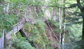 Randonnée Marche SAINT-MAURICE-SUR-MOSELLE - Le Lac d'Alfed et les Roches de Morteville - Photo 1