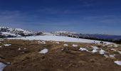 Trail Snowshoes ALBIES - plateau de beille - Photo 4